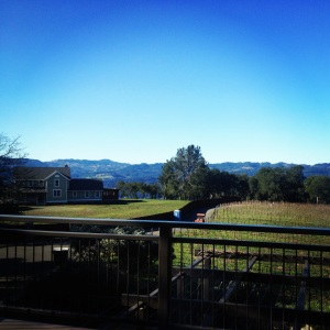 arkentone_vineyard_howell_mountain_napa_valley